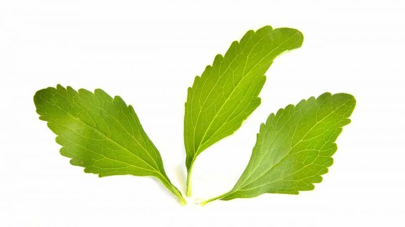 Stevia, Süßen ohne Kalorien
