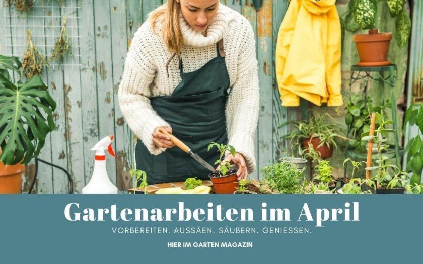Gartenarbeiten im April, Garten Magazin, Hornspäne kaufen, Kompost anlegen