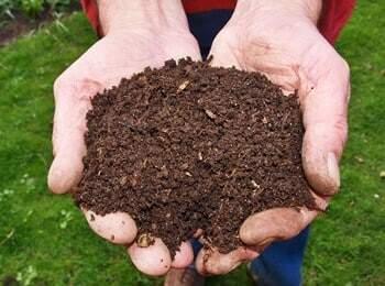 Frischer Humus vom Holzkomposter oder Komposter aus Metall