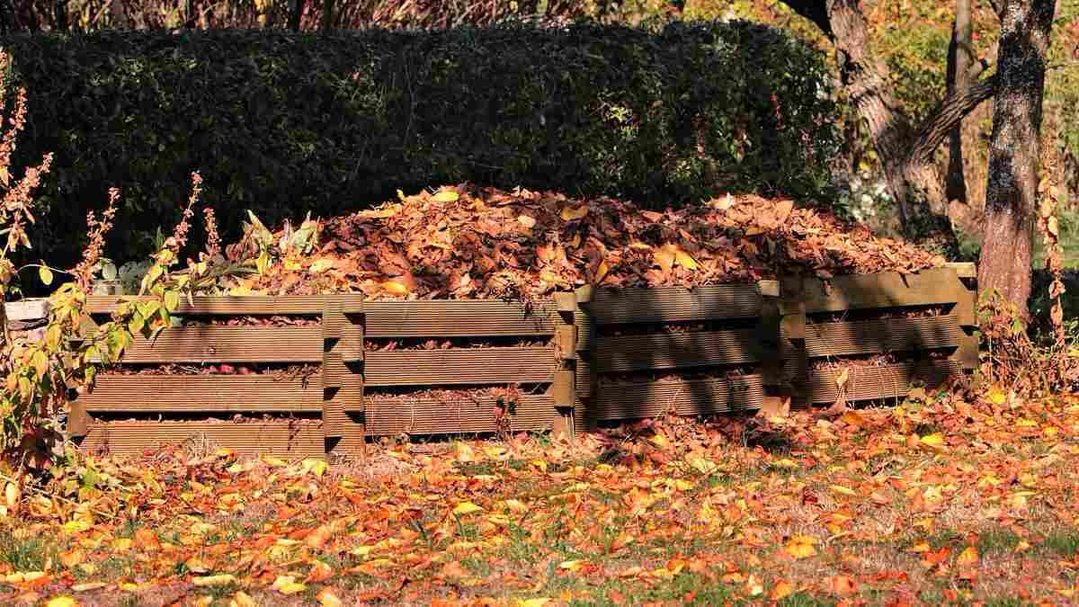 Was gehört auf den Kompost? Garten Magazin