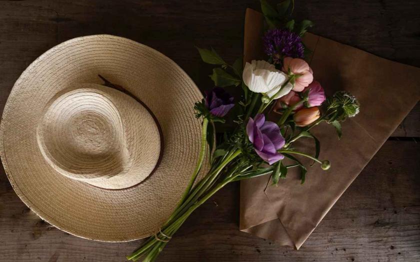 Gartenarbeiten im Juli, Selbstversorger, garten magazin