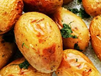 Kartoffeln pflanzen im Topf