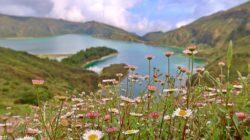 Nachhaltig reisen, Wandern in Portugal, Reiseportale