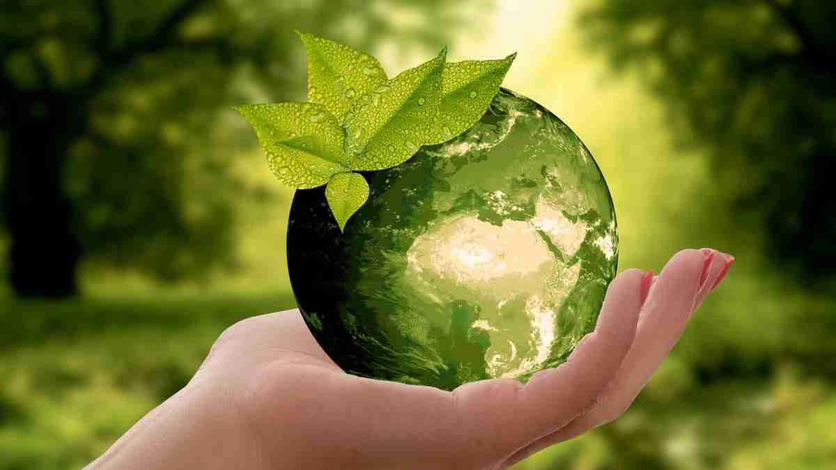 Nachhaltigkeit, wie nachhaltig leben, Lifestyle Magazin