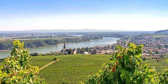 Weinregion Rheinhessen, Weinferien, Generation 35+