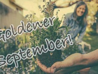 Gartenarbeiten im September, Selbstversorger, Nachhaltigkeit