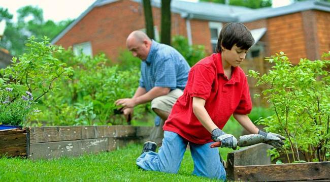 Natürlicher Dünger, Brennnesseljauche selbst herstellen, Gartenarbeiten, Garten Magazin