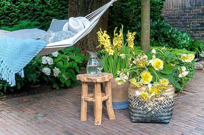 Blumen im Garten | Was blüht zwischen Juli und Oktober?
