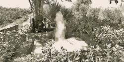 Bewässerungssystem Ägypten, reportage auf dem land, lifestyle magazin