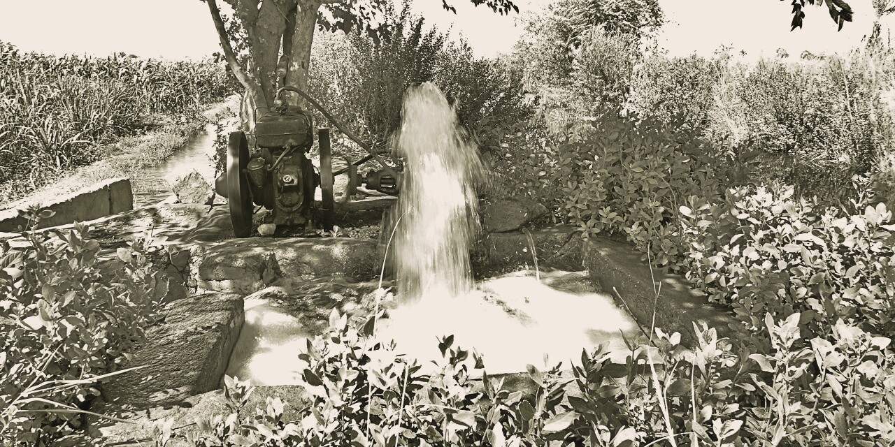Bewässerungssystem Ägypten, am Nil, reportage auf dem land